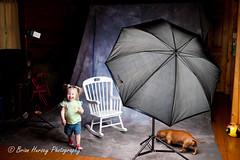 Lillie's 17 month and Olivia's 6 month studio setup. (Brian Hursey) Tags: umbrella canon studio flash impact lillie hursey