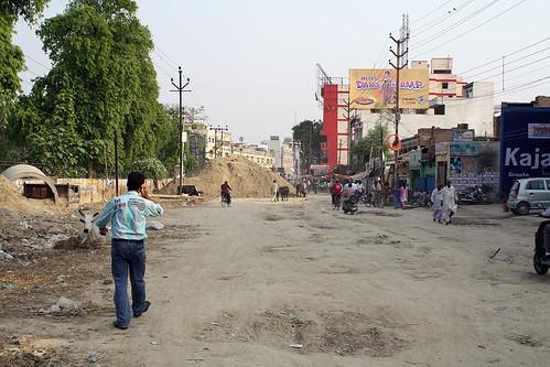 インドの道には野良ウシだらけ