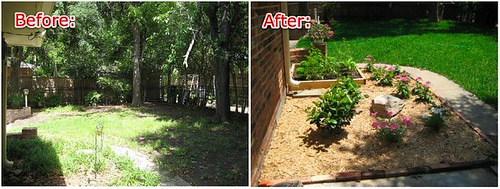 backyard_before-after3