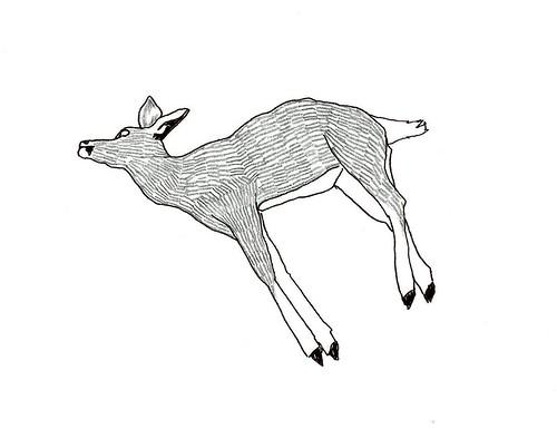 dead deer III