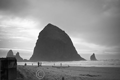 DSC_0004-edit051 (orig_lowolf) Tags: usa oregon 1 haystackrock canonbeach lakeoswego february09 feb1309