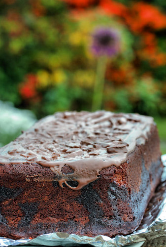 chocolate loaf cake 8808 R