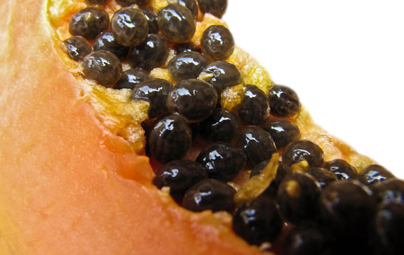 papaya and seeds