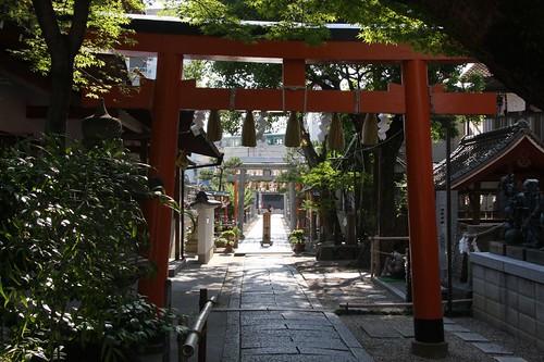 A red torii,境内