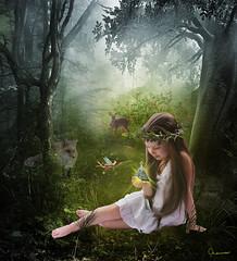 Fairy Light (charissa1066) Tags: light nature girl forest magic fairy fawn fantasy fox plus 100 lantern glade
