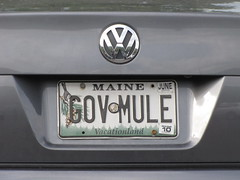 GOV MULE (Maine)