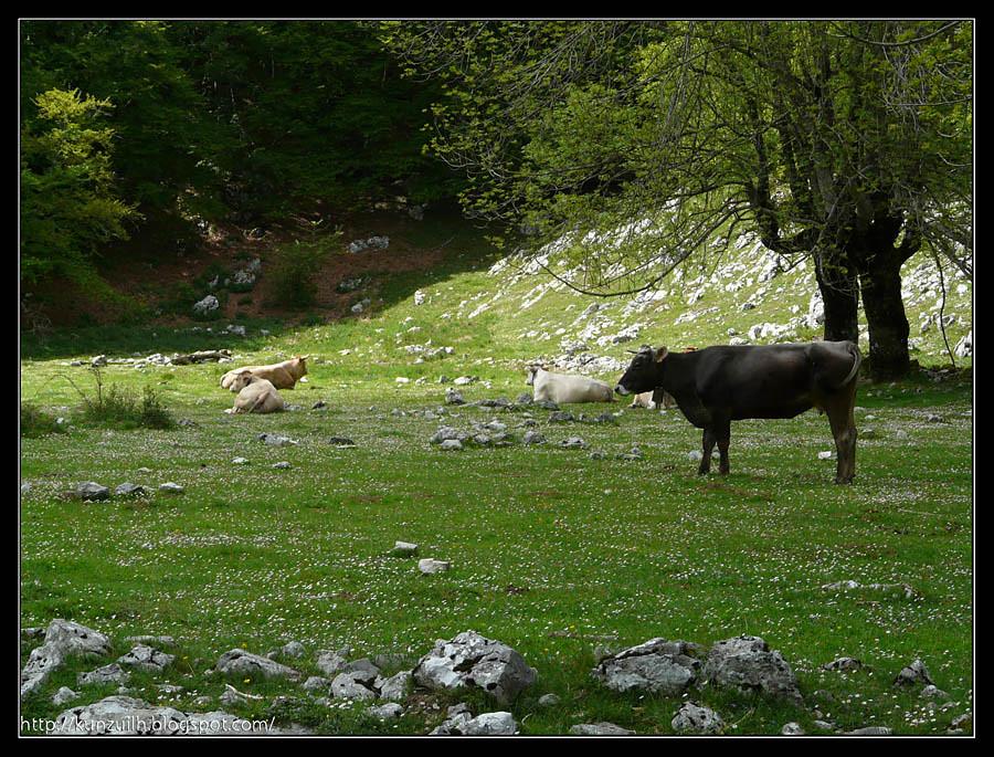 Aizgorri_164009