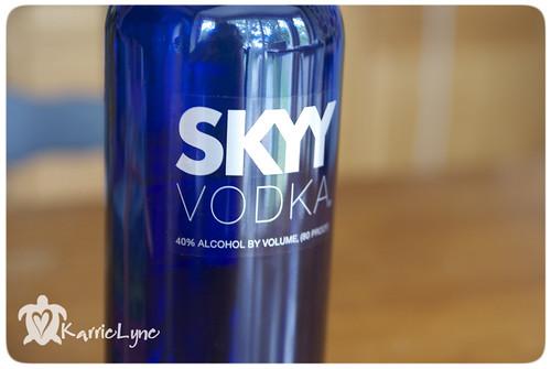 tip #7 skyy