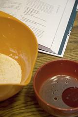 Seitan Ingredients Separated (Courtney Bruesch Photography) Tags: cooking recipe vegan seitan veganomicon
