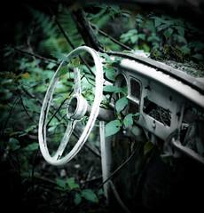 Environmental friendly car (Maron) Tags: green car wheel forest steering sweden tcksfors supermarion marionnesje