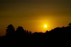 sunsets (diiiivya) Tags: trees sunset sky orange sun nature beautiful silhouette evening twilight sweet sunsets hills rays top20sunsetsofourhearts