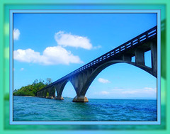 SAMAN - DOMINICAN REPUBLIC (rlurama) Tags: bridge dominicanrepublic saman
