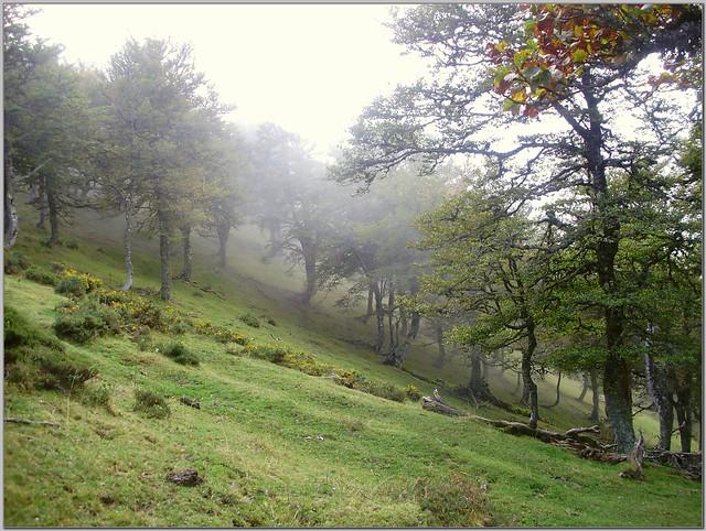 Llambria-Sahoya 066