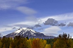 Mount Adams with Autumn Clothes and Lenticular Hats (Starlisa) Tags: autumn mountain snow fall sunshine clouds volcano washington lenticular troutlake 2010 mountadams october22 oct22 newsnow mountadamslenniefall8627wo
