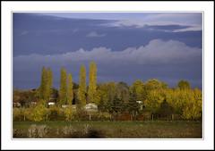 octobre 2010 (@lain G) Tags: france automne nikon couleurs ciel arbre iledefrance seineetmarne varennes d90