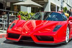 Ferrari Enzo (Moo Moo Says the Cow) Tags: ferrari enzo car red