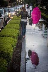 4 - Huyendo a casa bajo la lluuvia - 14Jun17 (oemilio16) Tags: cdmx ciudad de méxico lluvia rain raining canon umbrella paraguas sombrilla agua street calle streetphotography lloviendo t6 1300d kissx80 city df