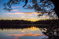 Another sunset capture... (Jens Haggren) Tags: sunset evening landscape nature silhouettes trees reflections water lake home nacka sweden jenshaggren myrsjön