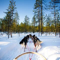 Finland (Zeeyolq Photography) Tags: finland