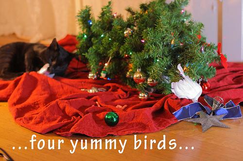 4 yummy birds