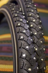 Schwalbe Marathon Winter tires