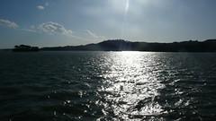 P1080319 (woguwog) Tags: sea japan autumnleaves matsushima