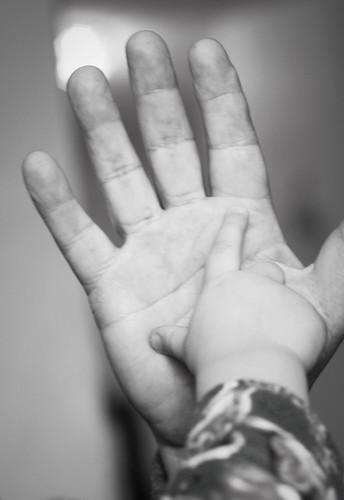 333:365 High-five