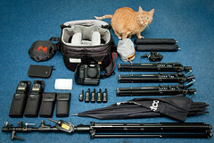 What's in my bag (VictorMk1 (read my profile)) Tags: camera favorite slr umbrella cat canon bag toys photography ginger kat fotografie reporter gear 420 equipment zeus westcott dslr apollo rood speedlight arsenal softbox aw reflector 43 manfrotto 430 omnibounce 026 lowepro swivel gearporn faved 035 flashes lightstand stofen speedlite alienbees 430ex d400 triggers canonef24105mmf4lisusm falconeyes strobist 40d stealthreporter 5001b 420b loweprostealthreporterd400aw bge2n cynersync catsnamedzeus manfrottoofficialgroup