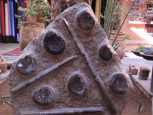 Rock365 : 01 01 2010 : Ammonites