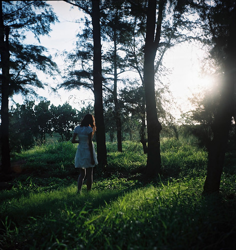フリー画像| 人物写真| 女性ポートレイト| アジア女性| 後ろ姿| 森林/山林|      フリー素材|