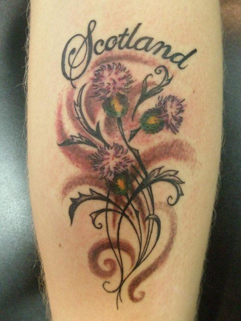 (Scottish thistle tattoo ) thistle tattoos gallery