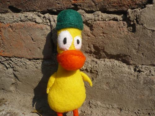 Pato (4)
