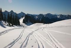 Ski tracks above Alta Vista (hishma) Tags: snow skiing mountrainier mountrainiernationalpark washingtonstate mountsthelens altavista skitracks cascademountains thecastle backcountryskiing pinnaclepeak skimountaineering tatooshrange leicam8 plummerpeak lanepeak southcascades elmaritm12828mm wapenayopeak