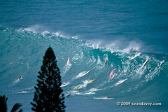 surfing a huge wave at Waimea Bay, on the north shor eof Oahu, Hawaii. (Sean Davey Photography) Tags: usa color horizontal hawaii oahu northshore waimeabay greenenergy seandavey oceanpower 011110 powerfulwaves surfnorthshore picturessurfers wavesenergy seawaveenergy oceanenergy surfbigwave bigwavesurfers biggestwaves waimeabaynorthshoreoahu jan10th2010