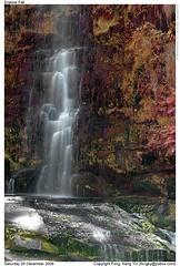 Erskine Falls ( Fongky) Tags: travel nature water australia victoria waterfalls greatoceanroad erskinefalls