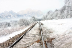 """""""Down in the Valley... Hear the Train Blow..."""" (bsmith4815) Tags: old railroad morning travel trees winter light sky white mist snow mountains cold ice nature lines misty fog rural america train photoshop landscape fun outdoors drive frozen us vanishingpoint cool midwest nebraska view unitedstates bright country north traintracks january foggy tracks rail naturallight manipulation frosty roadtrip elements cannon land manmade northamerica omaha scape viewpoint photoart ambience countryroad winterscape deepfreeze winterlandscape artphotography funwithphotoshop midwestwinter frostytrees artmanipulation wintermountains dodgecounty oldtracks exploringlight cannon40d"""