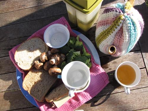 january picnic