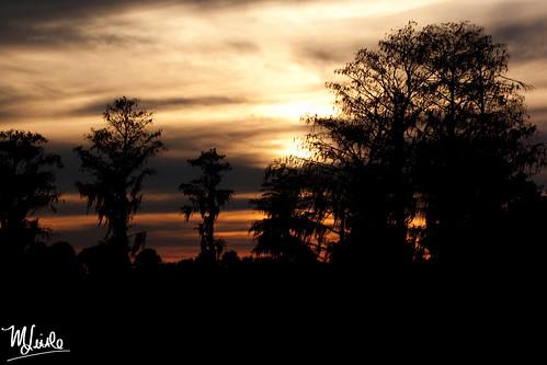 dinner island sunset 4