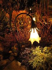 Brugmansia Lamp