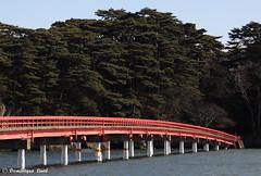t66 le fukuura jima (Dominique Linel) Tags: matsushima miyagi tohoku japon
