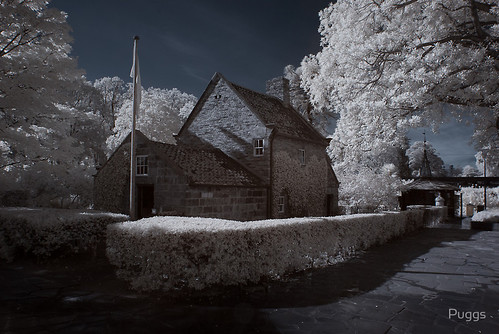 Cook's Cottage - Infrared (red/blue swapped)