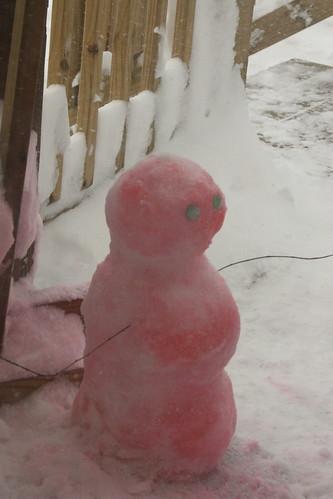 blizzardfeb10 307