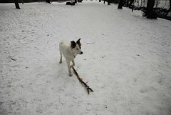 My stick now.