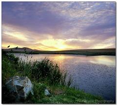 Unbalanced Sunset (Panorama Paul) Tags: sunset nohdr sigmalenses nikfilters vertorama nikond300 wwwpaulbruinscoza paulbruinsphotography dubanville unbalancedcomposition