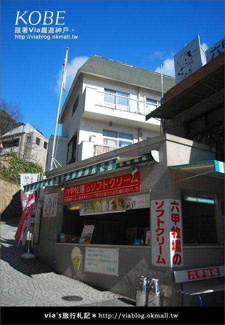 【via關西冬遊記】神戶北野異人館~風見雞館31