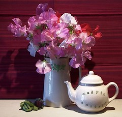 Sweetpeas I (teresue) Tags: flowers stilllife flower flora blossoms sweetpea cabbage teapot blooms 2009 magpiecottage