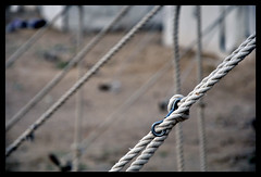 Our  frien\stership [ Explored ] (Wardat Alturab) Tags: camp nikon media desert rope tent committee 2010 d90 خيمة مخيم حبل الغدير الإعلامية alghadeer