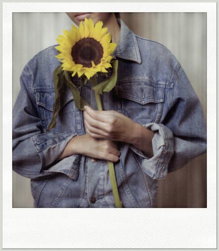 Denim sunflower by JeremySze.