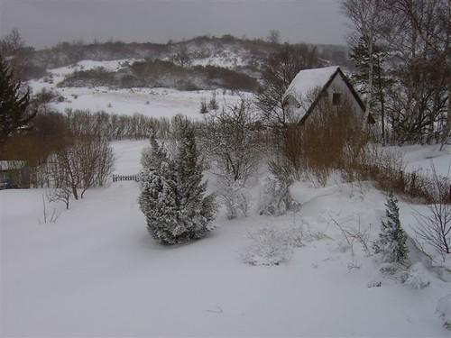 Winter mit Schnee auf Hiddensee Ferienwohnung M�nzner