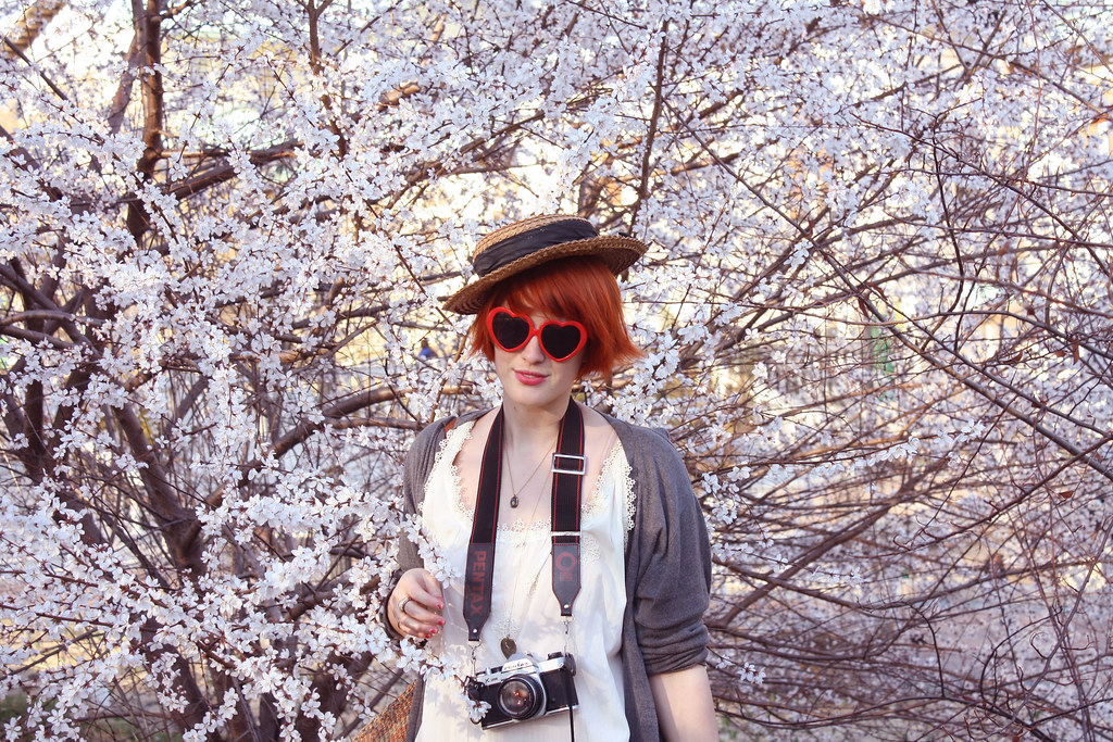 cherry blossoms and me